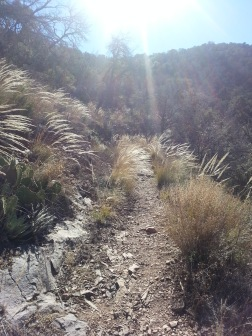 Pinnacles Trail