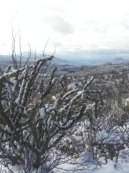 Pila Montoya Vista